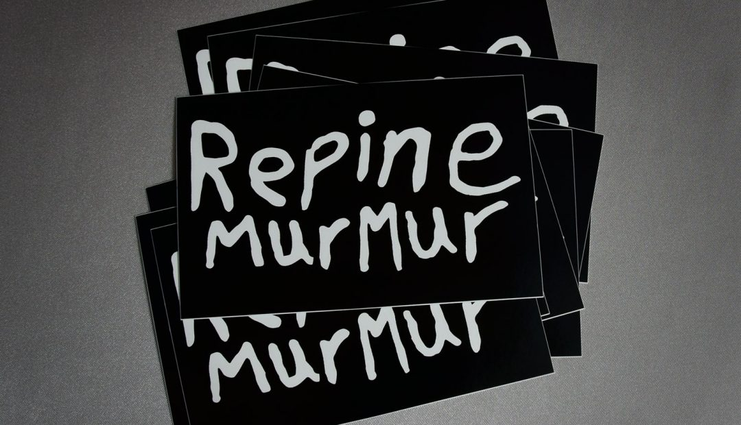 Repine Murmur Logo Stickers